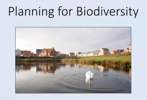 YACWAG Online Talks 2021 - Sarah Dale - Planning for Biodiversity